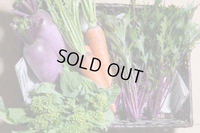 画像1: 紫や緑の彩り野菜セット