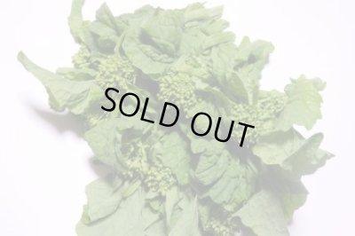 画像3: 丹波篠山の新米2kgつき☆紫や緑の彩り野菜セット