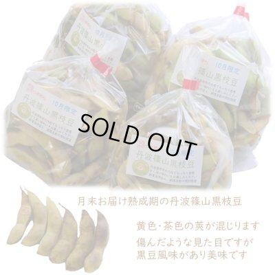 画像2: 熟成期 月末お届け 丹波篠山黒枝豆 鮮度保持袋入り「さや」のみ 1kg